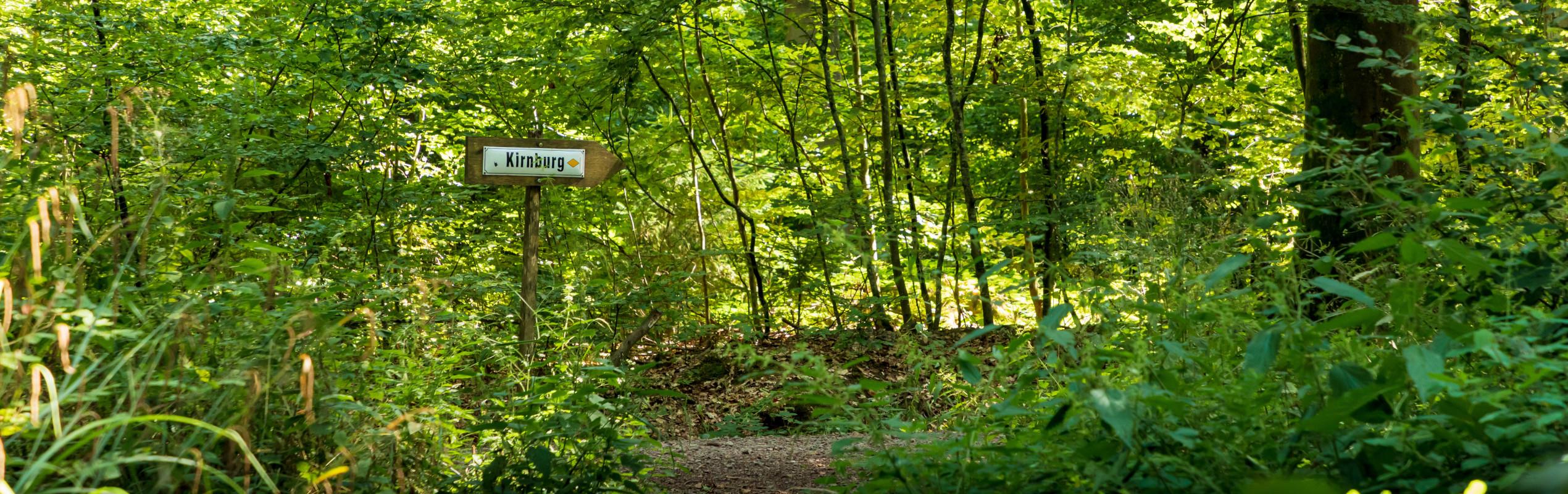 Wanderwege zur Kirnburg